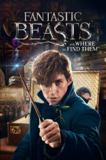 Nonton Film Fantastic Beasts and Where to Find Them (2016) Terbaru