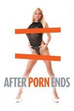 Nonton Film After Porn Ends (2012) Terbaru