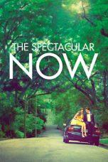 Nonton Film The Spectacular Now (2013) Terbaru