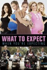 Nonton Film What to Expect When You're Expecting (2012) Terbaru