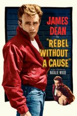 Nonton Film Rebel Without a Cause (1955) Terbaru